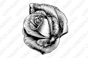 Rose Flower Engraved Etching Woodcut