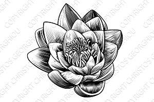 Water Lily Lotus Flower Etching