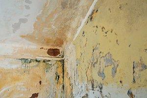 Peeling Wall Ceiling
