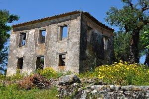 Abandoned House Spring