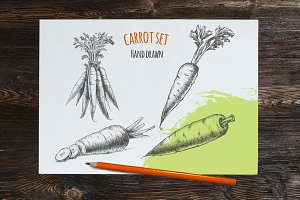 Carrot hand drawn vector sketches