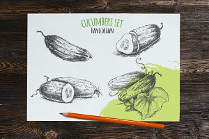 Cucumber hand drawn vector sketches