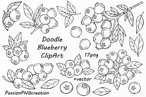 Doodle blueberry clipart