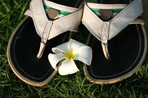 sandals and flower