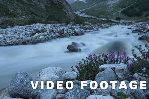 Mountain river and flowers. Time-lapse