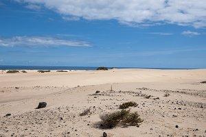 Fuerteventura Dunes