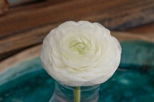white ranunculus flower in glass on ceramic tray