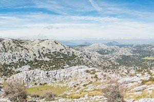 Panorama of sunny landscape