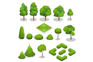 Isometric vector trees elements for landscape design.