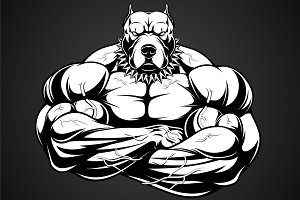 Angry dog bodybuilder