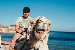 Guy rides on a camel on the beach