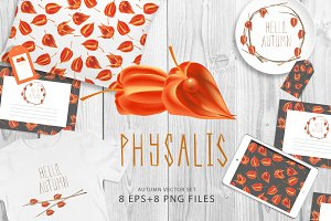 Hello autumn physalis vector set
