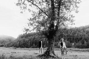 A tree like a movie