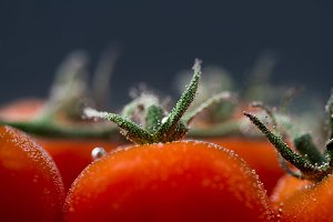 Fresh red tomatoes in water