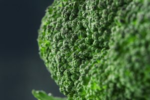 Closeup of Fresh broccoli