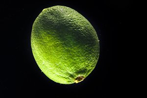 Green lime on black background