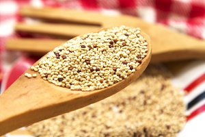 Wooden spoon with quinoa on plate of colors