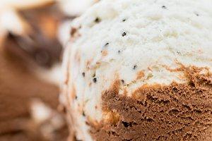 Vanilla and Chocolate Ice Cream Scoop