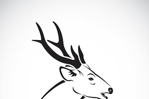 Vector of a deer head. Wild Animals