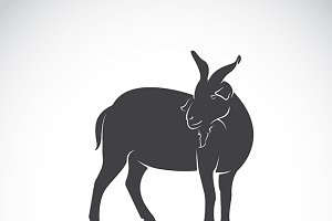 Vector of a goat. Wild Animals.