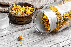 dried flowers of calendula