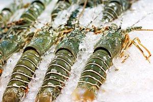 Street sea food