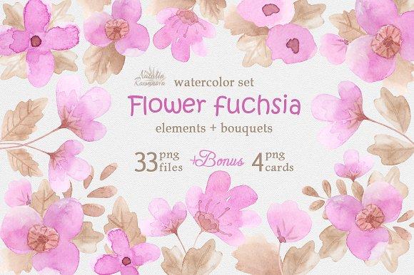 Flower Fuchsia Watercolor