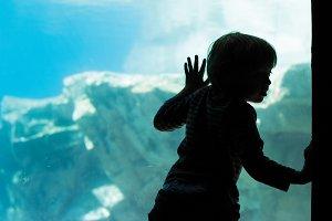 Child at the Aquarium