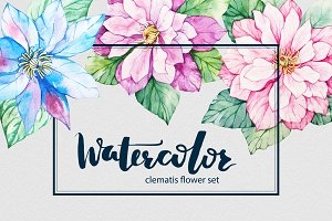Watercolor Clematis flower set