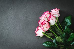 Beautiful pink roses over stone bgr