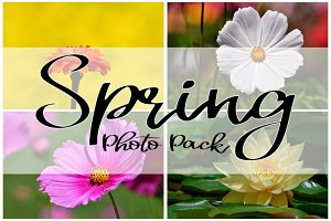 SPRING PHOTO PACK