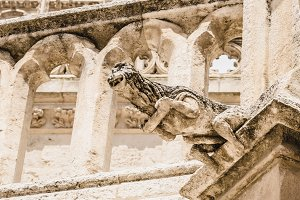 Gargoyle in the cathedral of Burgos