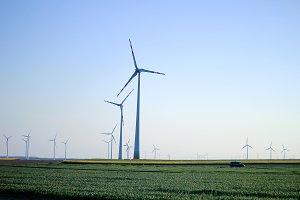 Windmills on the field at sunset