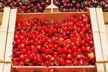Red cherries. Fresh fruit