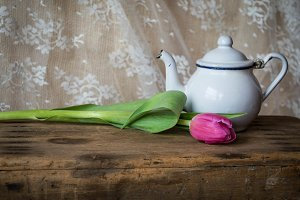 Tea and Tulips
