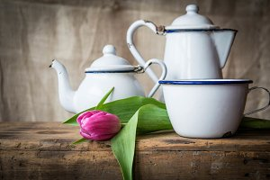 Tulips and Tea Time