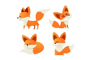 Fox- modern vector set of flat illustrations.