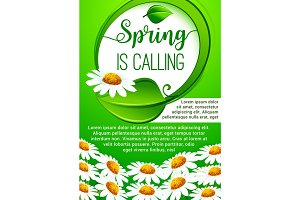 Spring holidays floral banner with daisy flowers