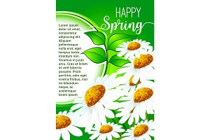 Happy Spring greeting card with daisy flowers