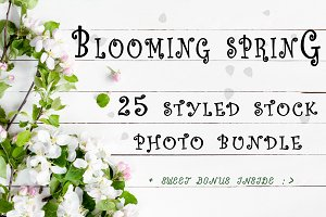 Spring bloom photo bundle