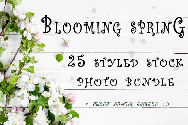 Spring bloom photo bundle