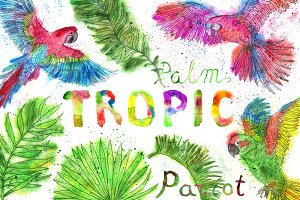 Tropic parrots and palms