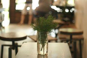 Jar of leaves
