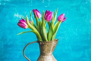 Spring purple tulips