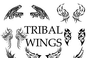 Tribal wings bundle