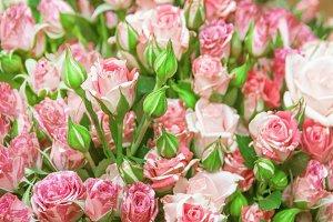 Mood of flowers