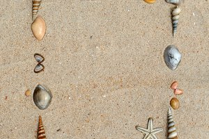 shells on sand frame