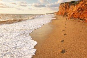 Traces on th sea shore