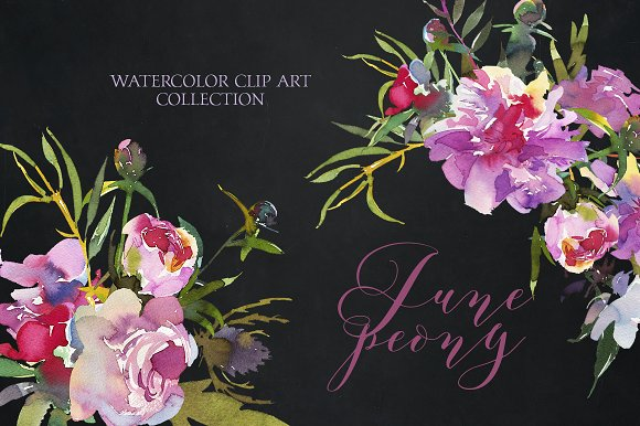 June Peony Watercolor Clip Art Set