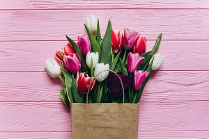 Fresh tulips in gift pack.